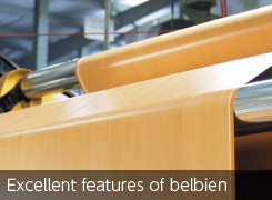 Excellent features of belbien